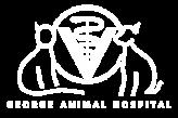 George Animal Hospital